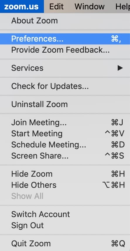 """Zoom """"Preferences"""" options."""
